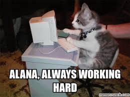 Alana Meme - always working hard