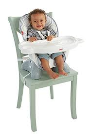 Feeding Chair For Baby India Amazon Com Fisher Price Spacesaver High Chair Geo Meadow Baby