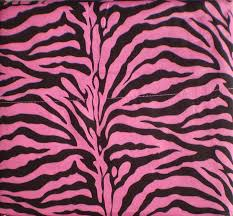 Pink Zebra Comforter Amazon Com Pink Zebra Print Queen Size Sheet Set 4 Pc Safari