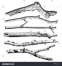 Floor Dry by Set Driftwood Ground Floor Hand Drawn Stock Vector 497646871