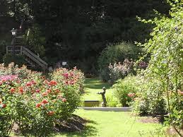 Raleigh Botanical Garden 24 Best Garden Wedding Images On Pinterest Backyard