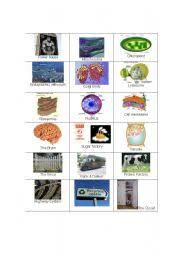 english worksheets cell part visual cards