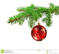 red ball on christmas tree branch stock images image 11029084