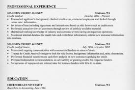 Information Security Analyst Resume Romeo And Juliet Essays About Love And Pay For Biology
