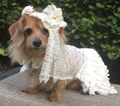 dog wedding dress dog wedding dress with veil by by fiercepetfashion on etsy