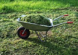 Garden Fertilizer Types - 5 ways to fertilize your organic garden garden club