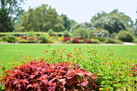 atlanta botanical gardens darling down south