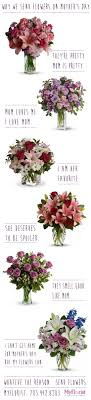 s day flowers same 16 best s day images on cactus flower florists