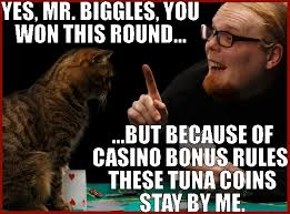tree desk maze coloing and funny casino cats for microgaming casinos