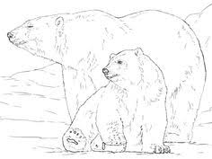 zentangle coloring polar bear jbartistryshop etsy