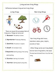 Characteristics Of Living Things Worksheet Middle Difference Between Living And Non Living Things By Mnsh2012
