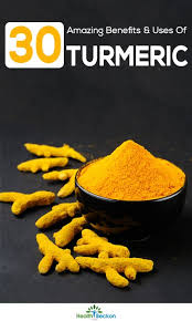 cuisine curcuma turmeric haldi is one of the most popular and oldest spices known