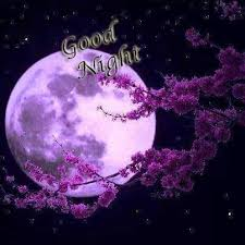 magical night wallpapers 126 best good night images on pinterest good night animation