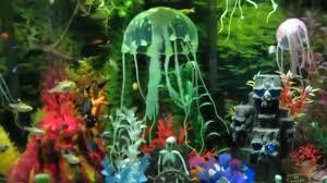 freshwater fish tank penn plax air toys 2014 11 13