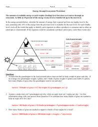organizing trophic levels activity