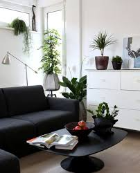 small living room with black sofa and decorating with house plants