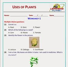 uses of plants grade 2 evs science worksheets test papers