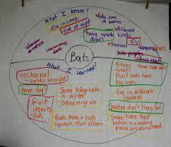 bats nonfiction writing for second grade