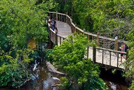Florida natural attractions images Gatorland florida hikes jpg
