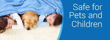 Professional Rug Cleaning Austin Carpet Cleaning Heaven U0027s Best Austin Tx