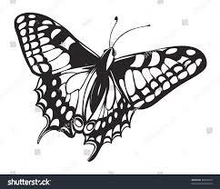 vector illustration butterfly swallowtail papilio machaon stock