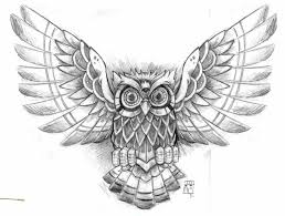best chest owl meaning owl designs tattoos and