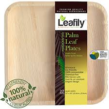 bamboo plates wedding bamboo plates wedding leafily palm leaf plates 10 inch square