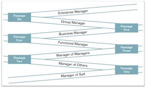 functional managers leadership curricula synet group
