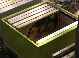 build it yourself diy beekeeping plans u0026 information http