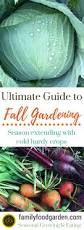 ultimate guide to fall u0026 winter gardening gardens vegetable