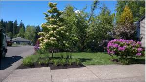 Landscaping Portland Oregon by Landscaping Services Portland Or Landscape Design Landscape