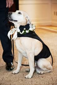 elegant wedding with classic black white color palette in