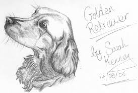my first drawing of a dog by sassie kay on deviantart