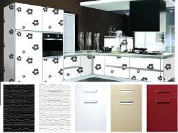 porte de cuisine en verre faaade porte cuisine verre avant flat pack amacricain en bois portes