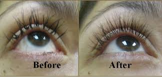 professional eyelash extension eyelash extension misconceptions the about safety billy