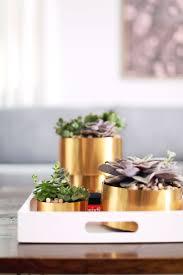 How To Make A Succulent Planter by Brass Succulent Planter Diy U2013 A Beautiful Mess