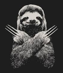 Sloth Meme Shirt - sloth sloths know your meme