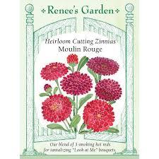 renee u0027s garden