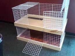 Large Bunny Cage Bunny Homes Bunny Care