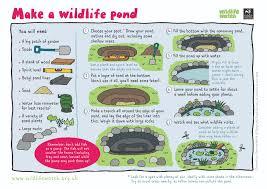 Wildlife Garden Ideas Wildlife Activity Sheets