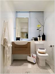 Bathroom Renovation Ideas Bathroom Small Toilet Design Images Modern Master Bedroom