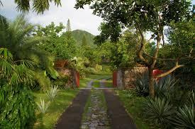 Landscaping Company In Miami by Miami Landscape Designer Raymond Jungles Wsj
