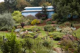 oregon native plant nursery nurseries in the willamette valley plan open houses oregonlive com