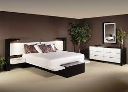 Teen Boy Bedroom Furniture by Bedroom Contemporary Furniture Really Cool Beds For Teenage Boys
