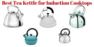 Which Induction Cooktop Is Best Best Tea Kettle For Induction Cooktops U2022
