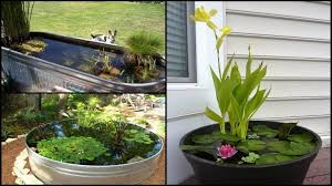 Fish For Backyard Ponds Awesome Aquarium And Fish Pond Ideas For Your Backyard