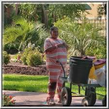 Botanical Gardens Houston Photo 1056 25 Prisoner Taking Care Of Plants In Mercer Gardens