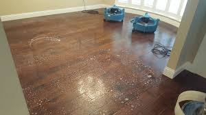 Restoring Shine To Laminate Flooring Hardwood Floor Cleaning Revitalize Your Hardwood Floors Ultra