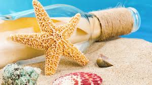 starfish tag wallpapers sun starfish sand beach wallpaper waves