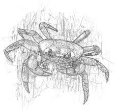 halloween crab halloween crab by john am on deviantart